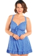 Always For Me Blue and White Alfresco Gingham Plus Size Two Piece Swimdress Set